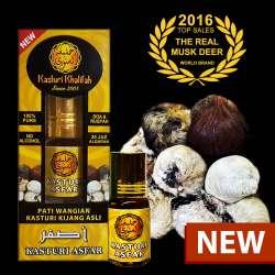 Pati Wangian Kasturi Kijang Asfar, Kuning, Yellow Musk Deer Original, Tulen